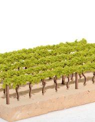 p-2428-Vineyards